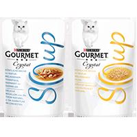 Gourmet Soup Coupon