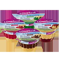 Lünebest Pudding Coupon